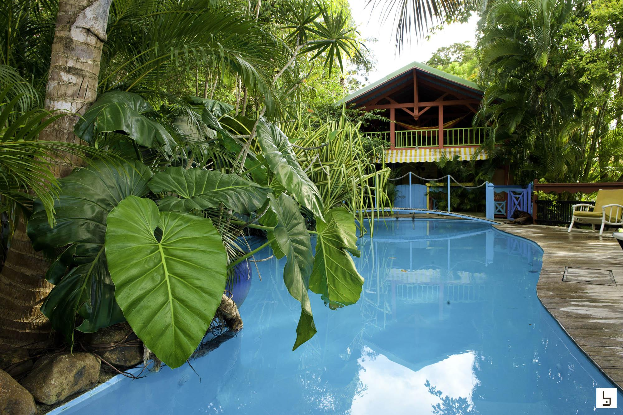 Guadeloupe tendacayou eco lodge spa