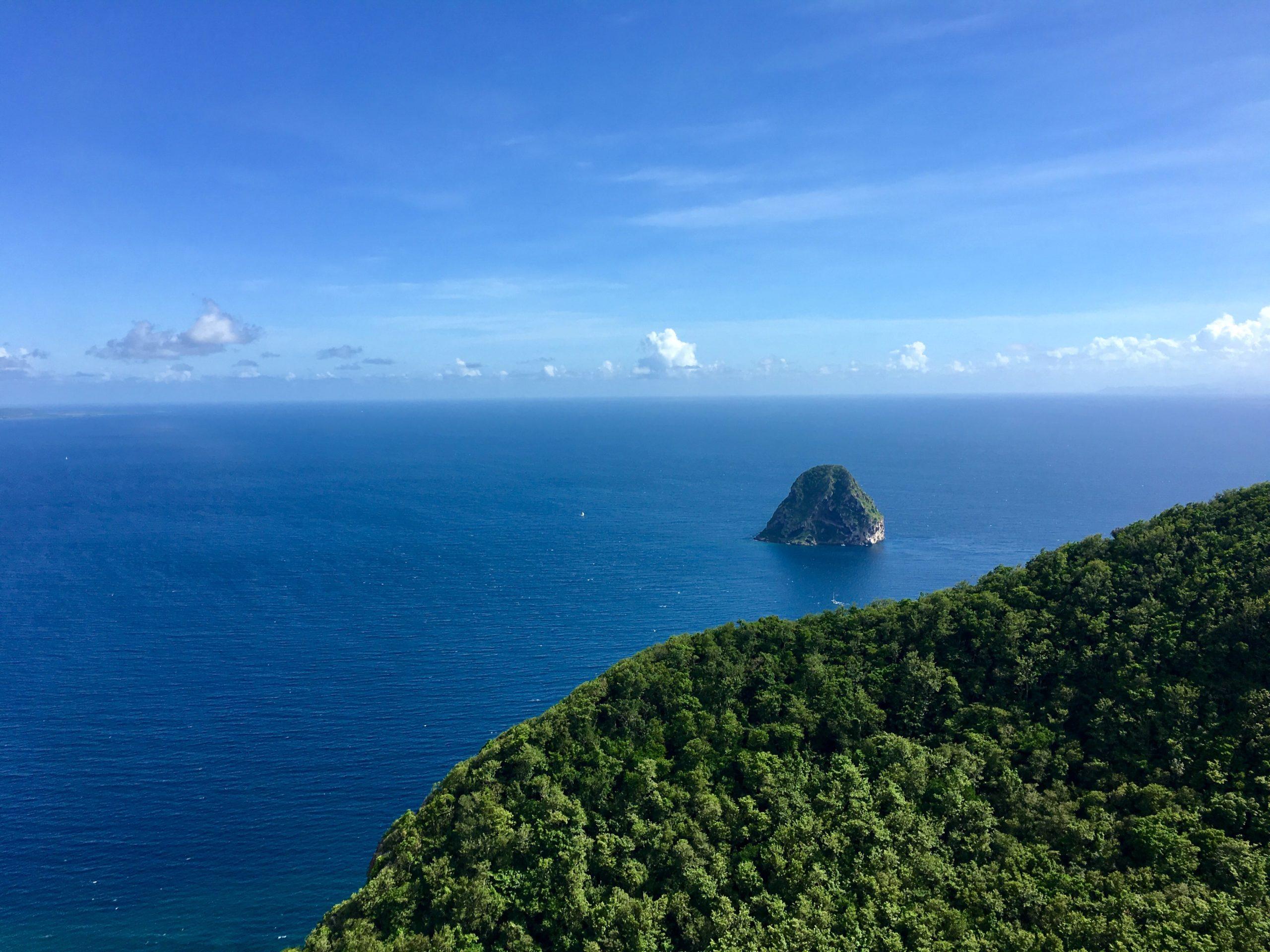 green trees island