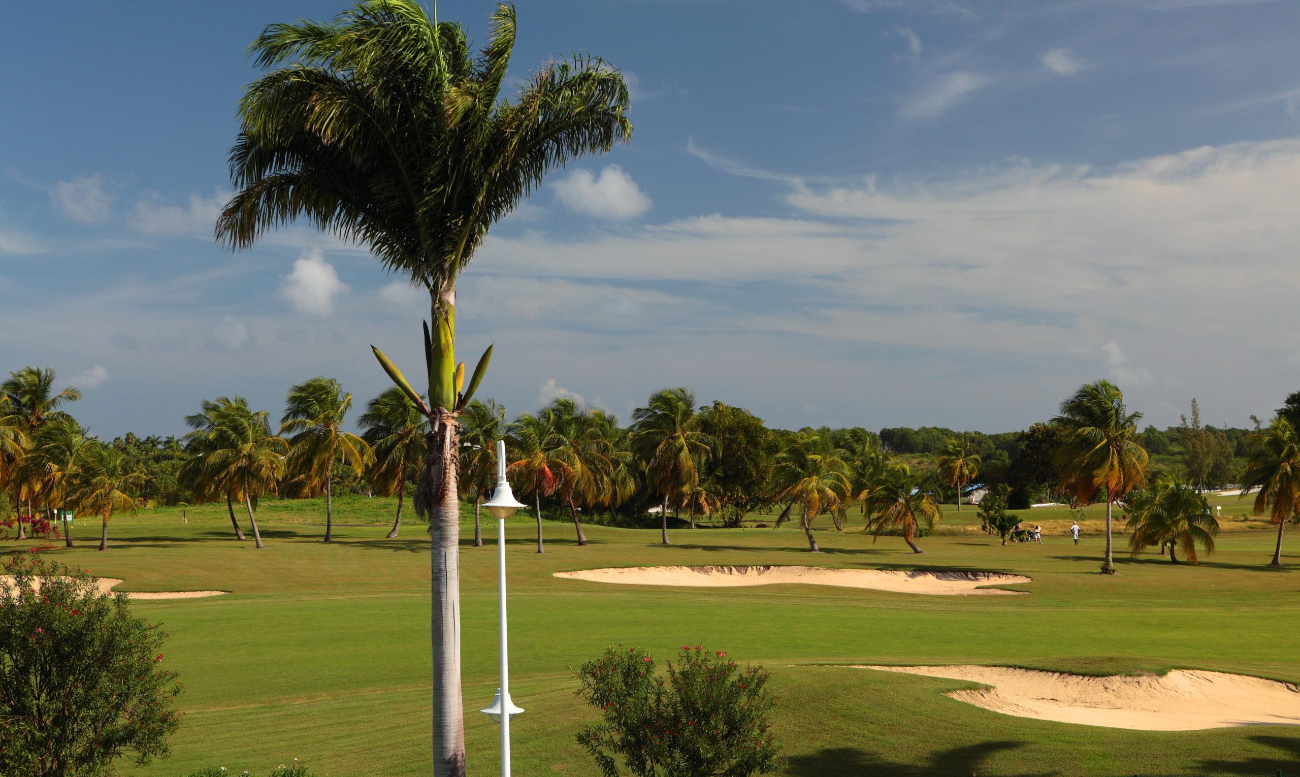 guadeloupe bwa chik hotel et golf