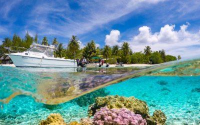 TIKEHAU – Ninamu Resort Pension Complète