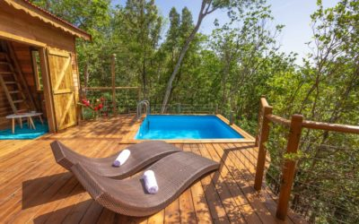 GUADELOUPE – Au Jardin des Colibris – Eco Lodge